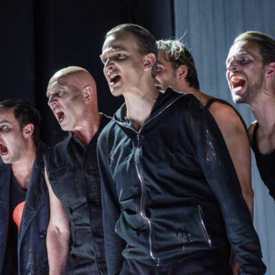Antigone chor 1 homepage